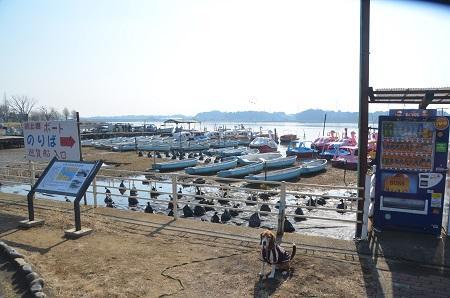 20150212手賀沼公園09