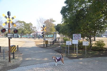 20150212手賀沼公園16