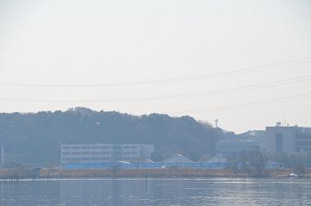 20150212手賀沼公園30