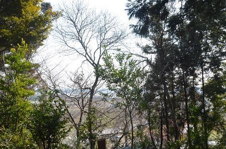 20150212根戸城址24