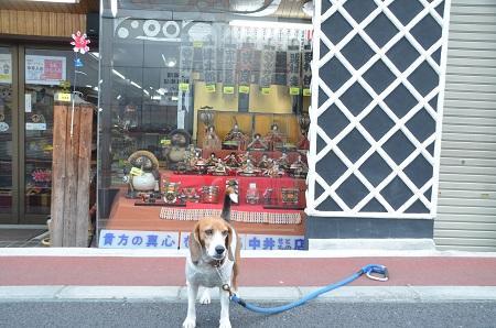 20150216城下町佐倉ひなめぐり14
