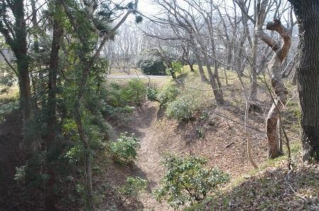20150216佐倉城址公園13