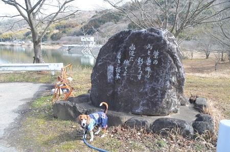 20150220つくし湖27