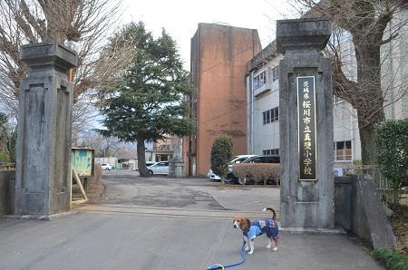 20150220旧・真壁小学校跡11