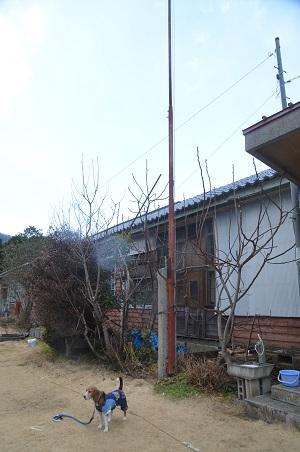 20150220大増小学校21