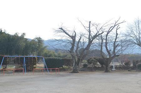 20150220朝日小学校12