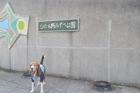 20150322ひたち野みずべ公園01