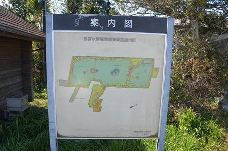 20150326宮島池親水公園03