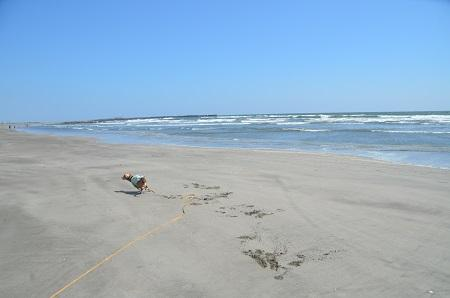 201450402片貝海岸17