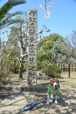 0150402伊能忠敬記念公園03