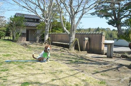 0150402伊能忠敬記念公園16