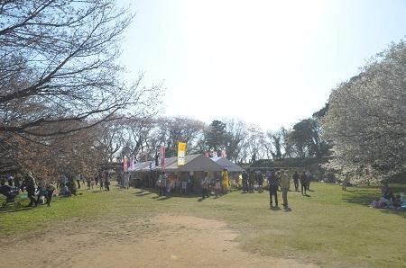 20150402佐倉城址公園12