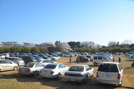 20150402佐倉城址公園25