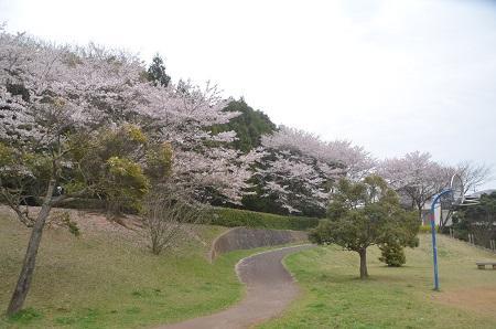 20150406白銀公園27