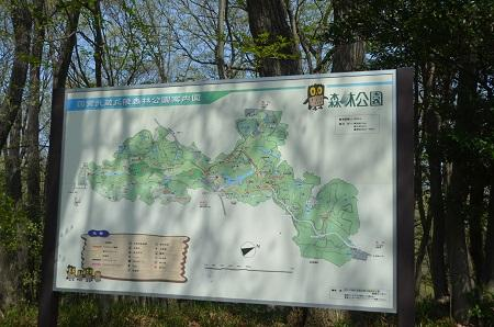 20140412国営武蔵丘陵森林公園03