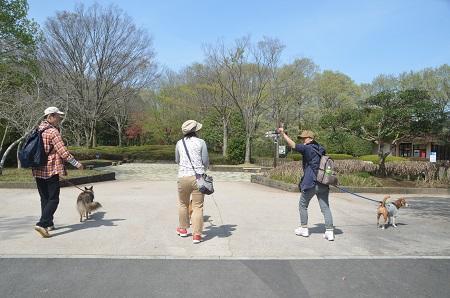 20140412国営武蔵丘陵森林公園02