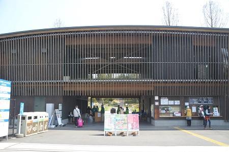 20140412国営武蔵丘陵森林公園01
