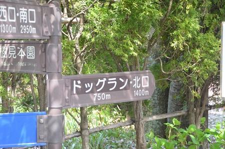 20150412森林公園ドッグラン01