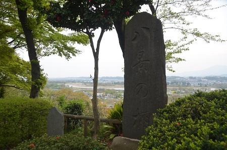 20150416相模川八景①八景の棚と河岸段丘05