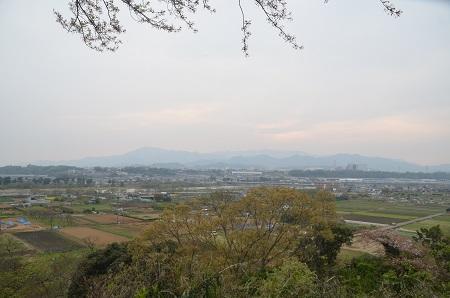 20150416相模川八景①八景の棚と河岸段丘01