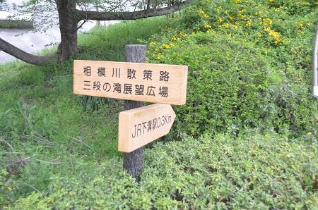20150416相模川八景①八景の棚と河岸段丘17