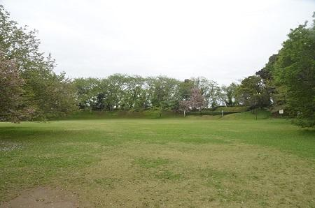 20150421佐倉城址公園12