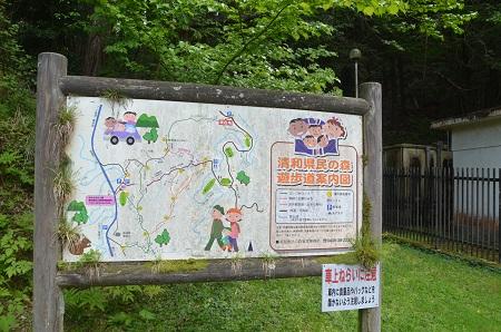 20150504豊英大滝01