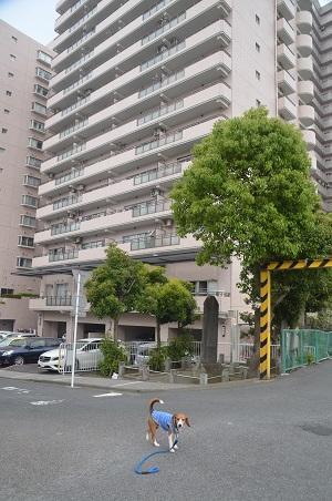 20150509烏山藩厚木役所跡05