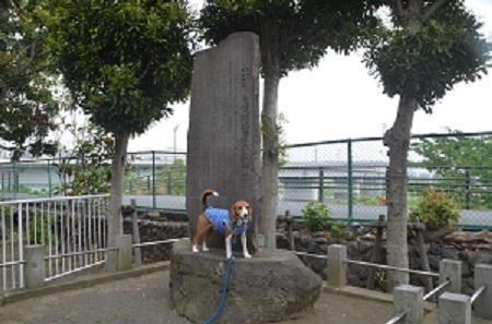20150509烏山藩厚木役所跡08