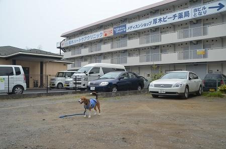 20150509荻野小学校下分校跡08