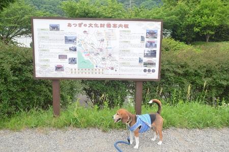 20150509荻野山中陣屋跡04