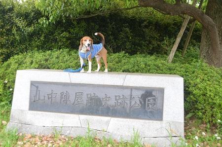 20150509荻野山中陣屋跡17
