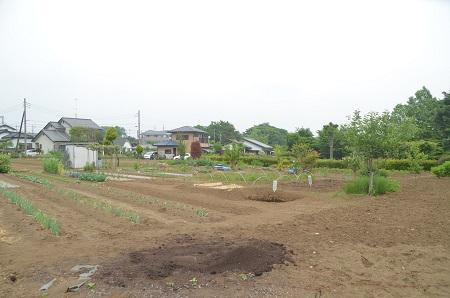 20150509荻野山中陣屋跡19