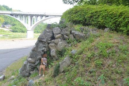 20150514相模湖八景 小倉橋15