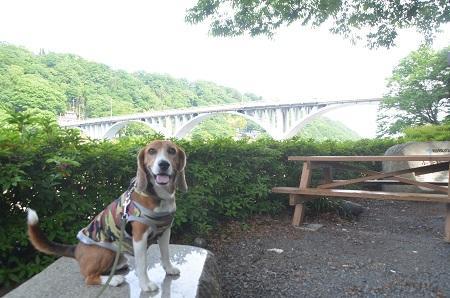 20150514相模湖八景 小倉橋14