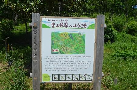 20150513野山北・六道山公04