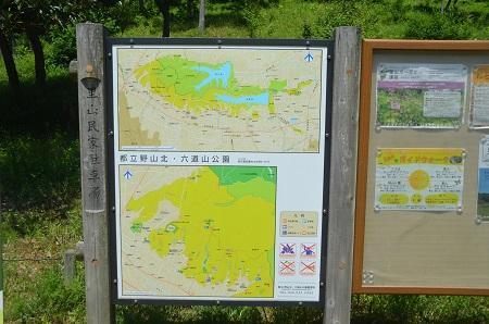 20150513野山北・六道山公02