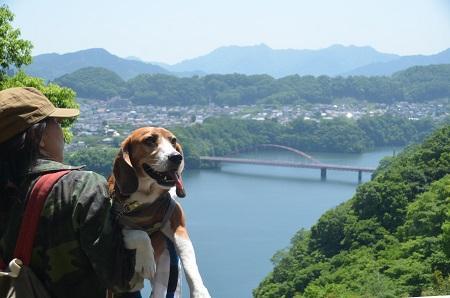 20150514相模川八景 津久井湖16