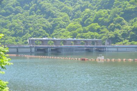 20150514津久井湖城山公園水の苑地10