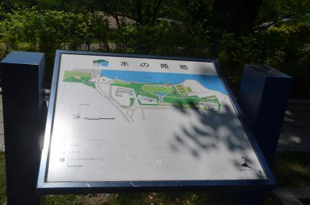 20150514津久井湖城山公園水の苑地19
