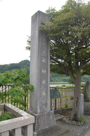 20150514相模湖八景 水郷田名06