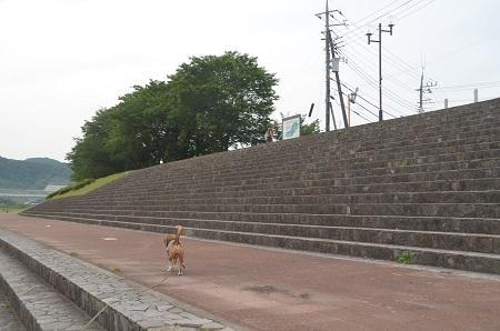 20150514相模湖八景 水郷田名03