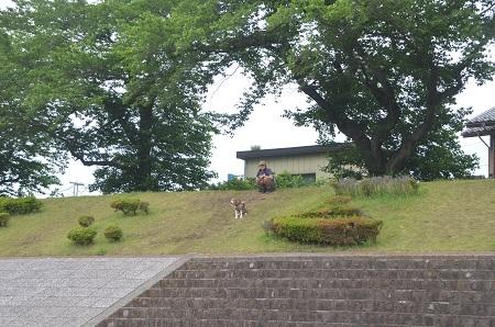 20150514相模湖八景 水郷田名20