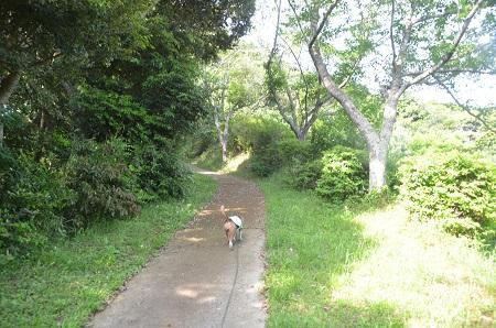 20150523東庄県民の森10