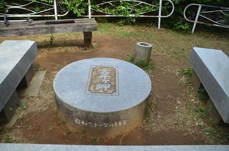 20150523雲井岬つつじ公園04