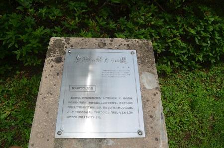 20150523雲井岬つつじ公園02