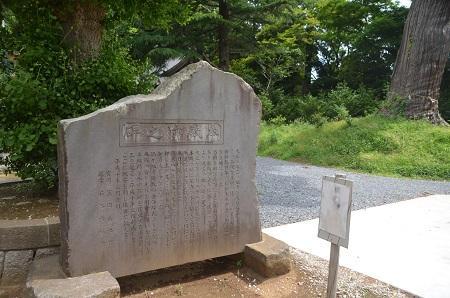 20150523雲井岬つつじ公園17