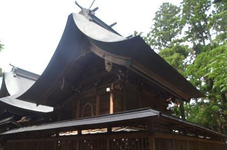 20150523雲井岬つつじ公園14