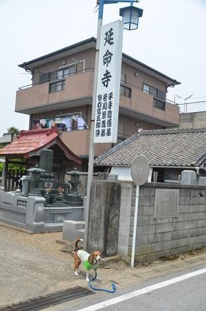 20150523笹川天保水滸伝20
