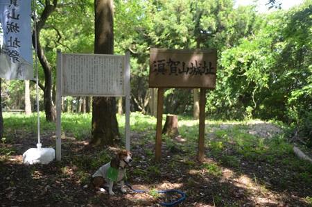 20150523須賀山城址20